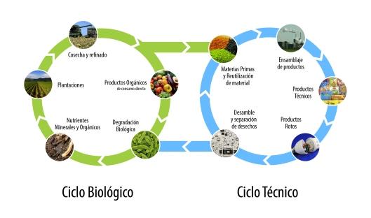 ciclos-de-vida-biologico-tecnico